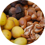 Oriental Group is able to offer cosmetic Argan oil and food Argan in bulk or packaged, as well as products of oriental Hammam and care: argan oil, black soap
