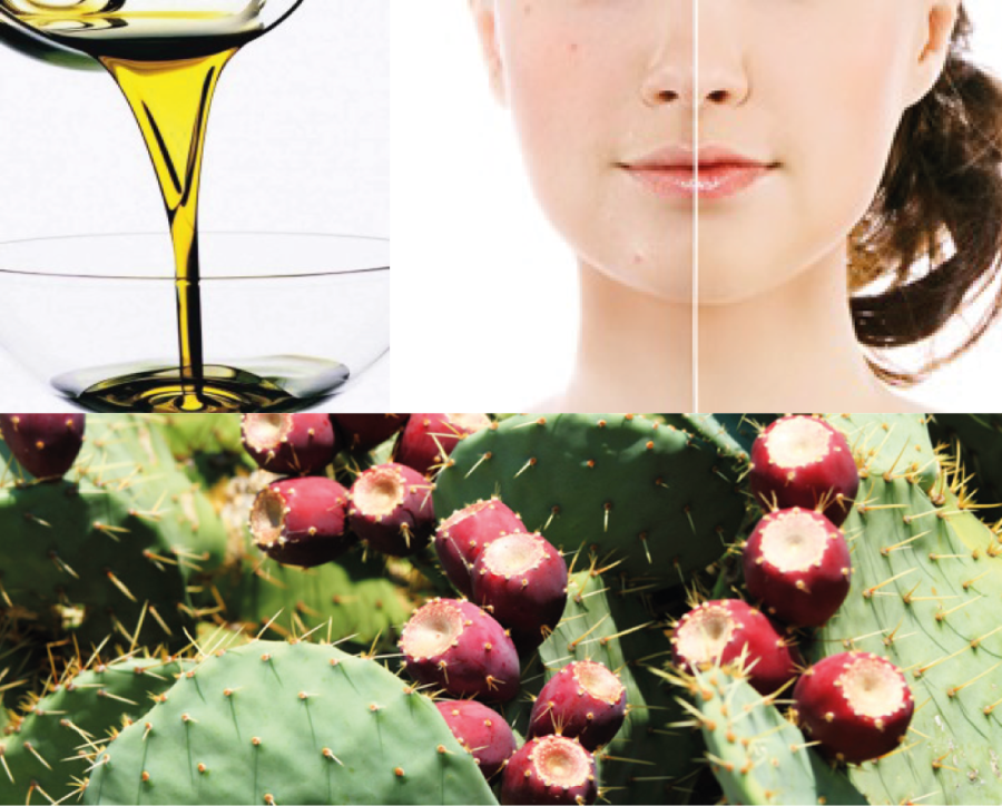 Cactus seed Oil, Barbary fig oil, Indian fig oil, Prickly pear seed oil