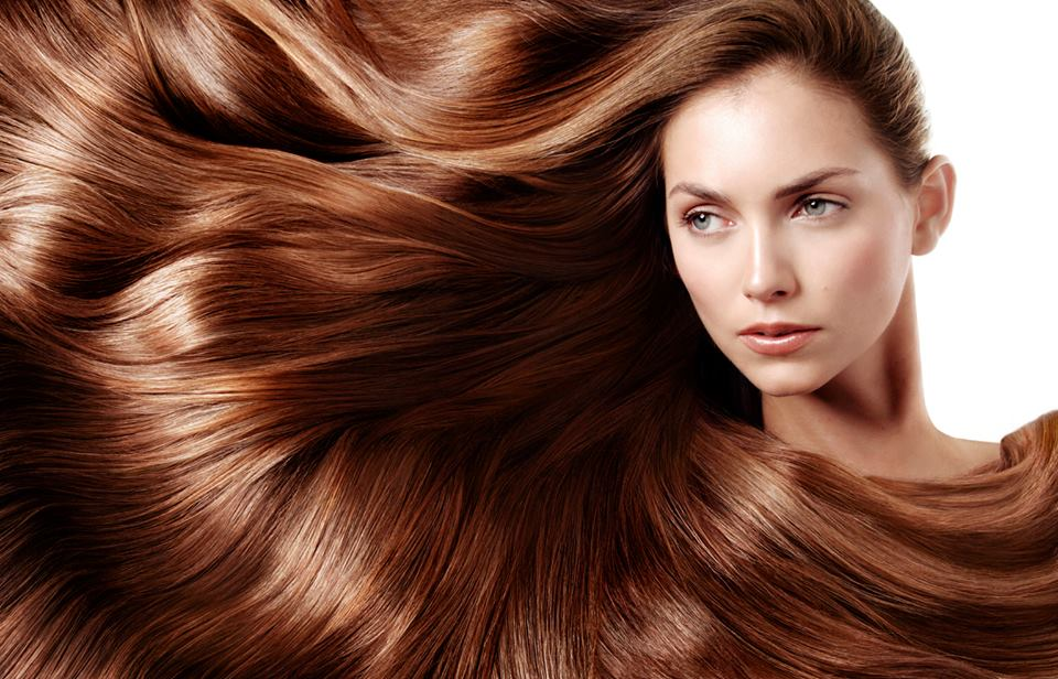 Wholesale hair salon organic Argan oil