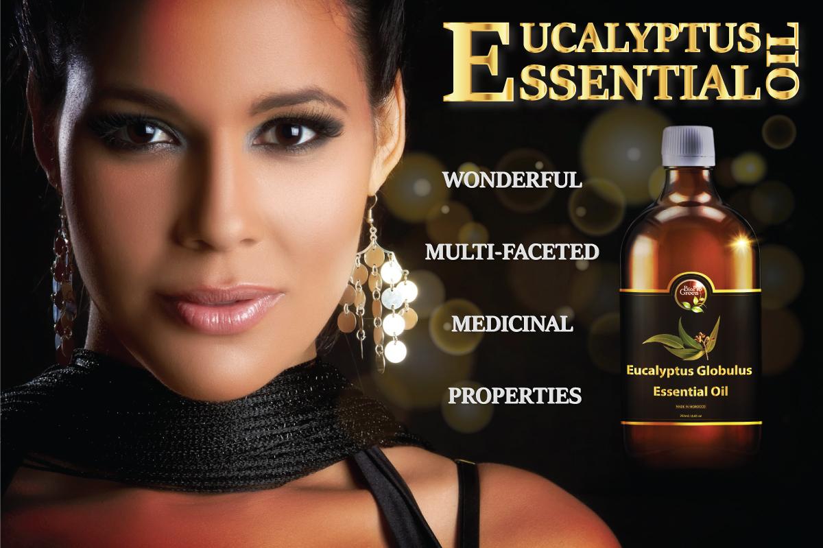 Moroccan eucalyptus essential
