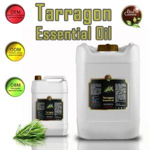 Tarragon Essential Oil