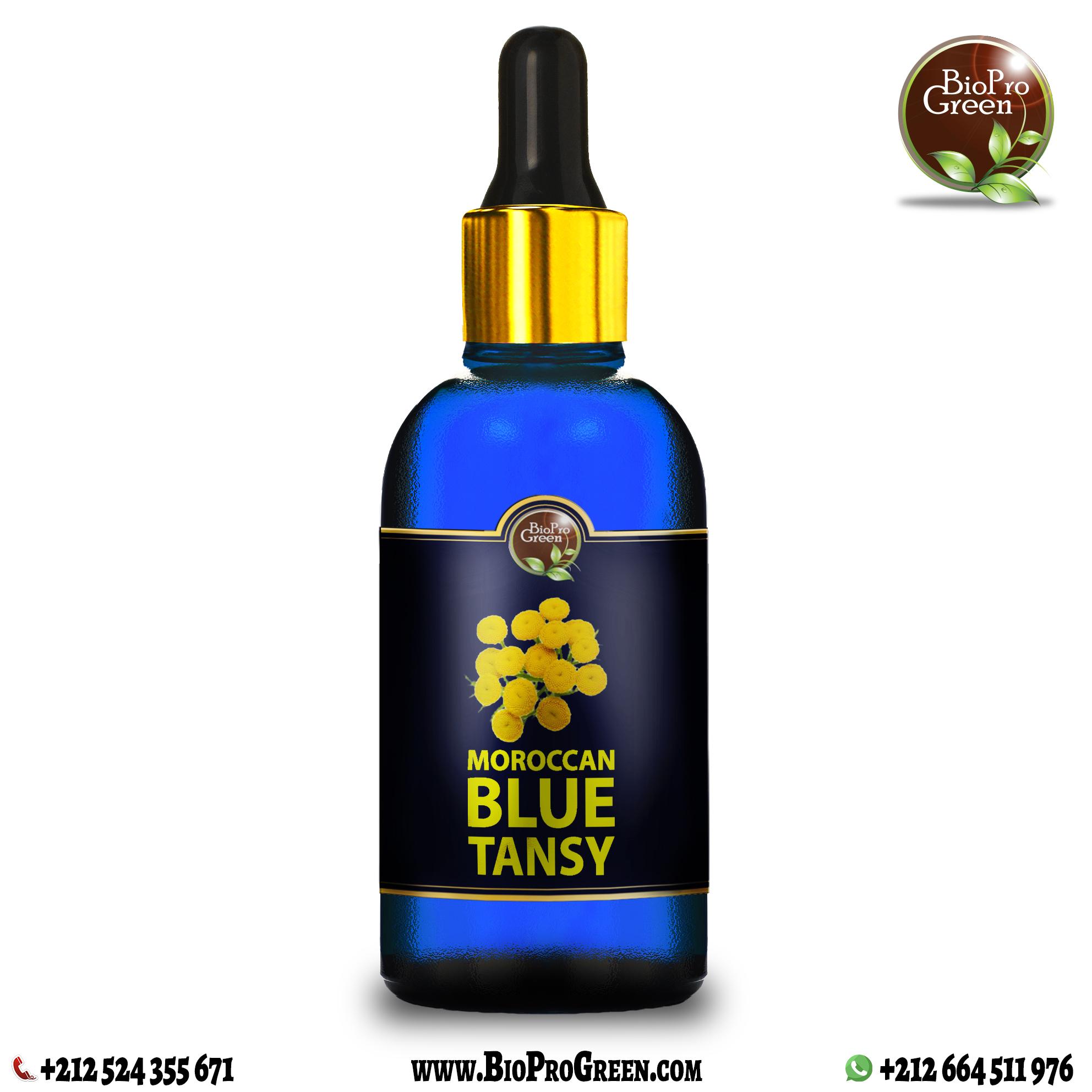 Moroccan blue tansy essential oil company